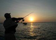 Week-end pêche étang de Thau