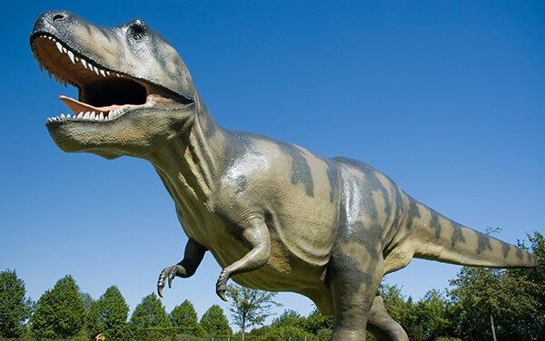 Musée des dinosaures près du Mas de Thau