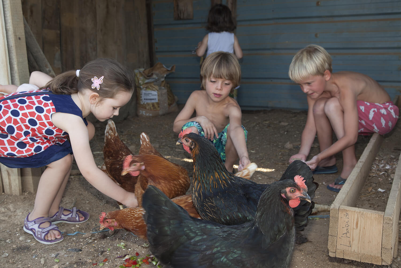 vacances enfants jeux animaux séjours activités